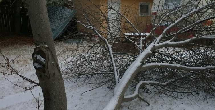 Preventing snow, wind & ice damage
